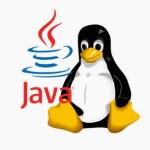 El uso de la firma digital FNMT en Semplice-Linux