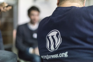 Wordpress Meeting en Viena (2013). Crédito: Flickr