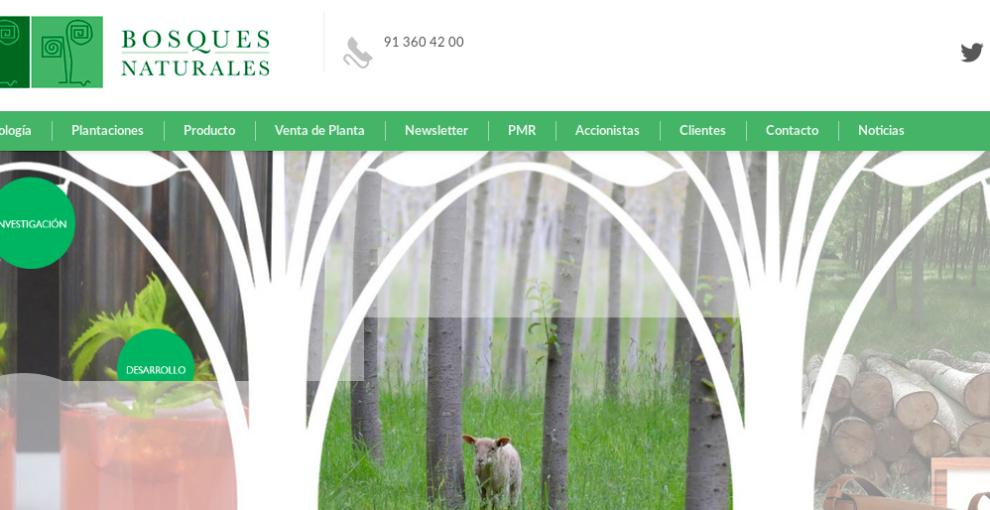 Caso Bosques Naturales: un juzgado de Madrid anula el contrato y reconoce al colectivo de afectados como consumidores